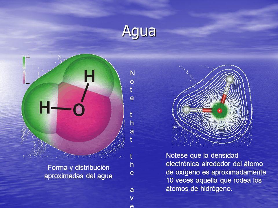 Forma y distribución aproximadas del agua