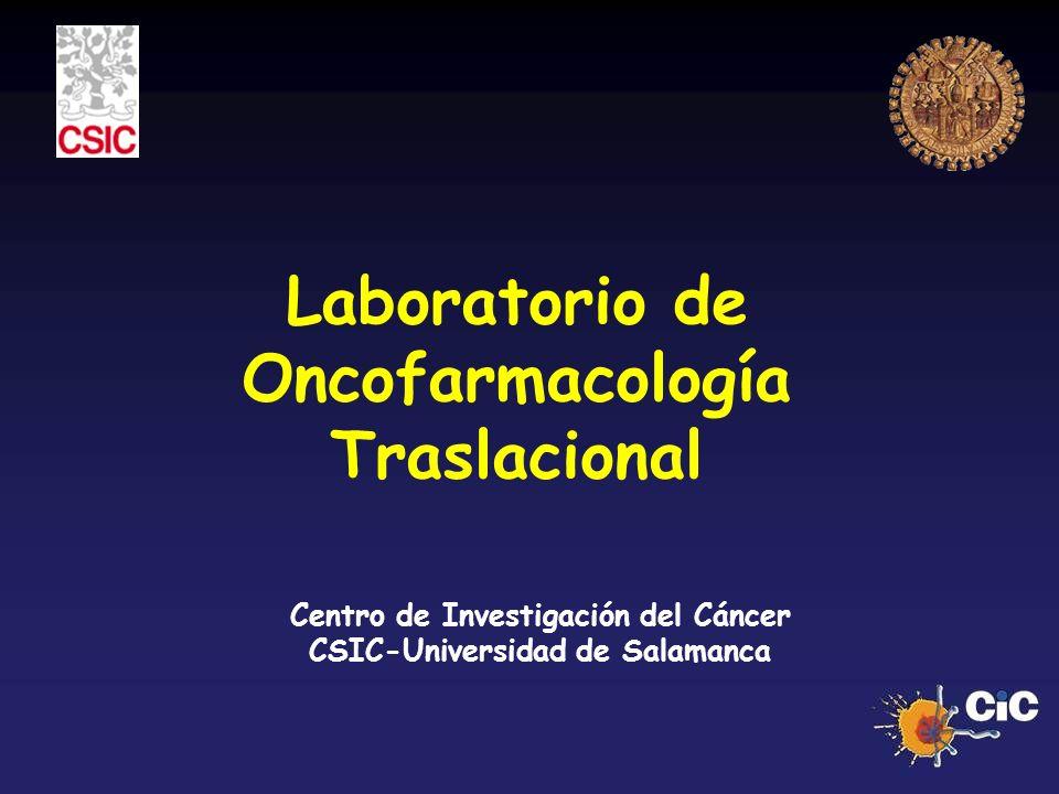 Laboratorio de Oncofarmacología Traslacional