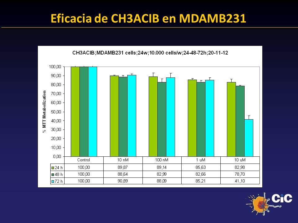 Eficacia de CH3ACIB en MDAMB231