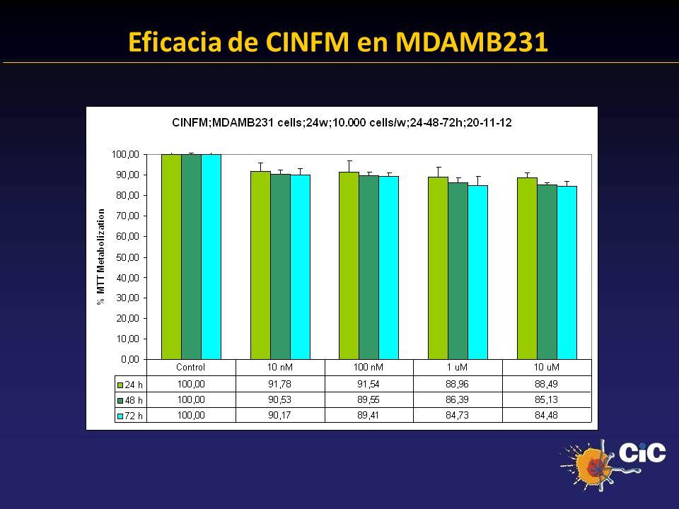 Eficacia de CINFM en MDAMB231