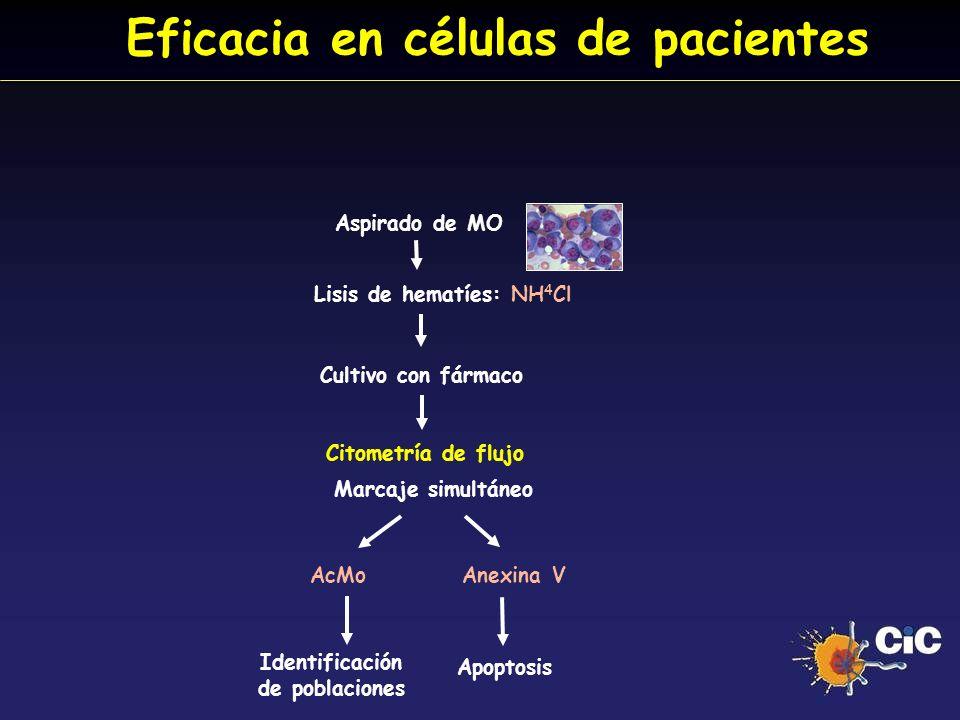 Eficacia en células de pacientes