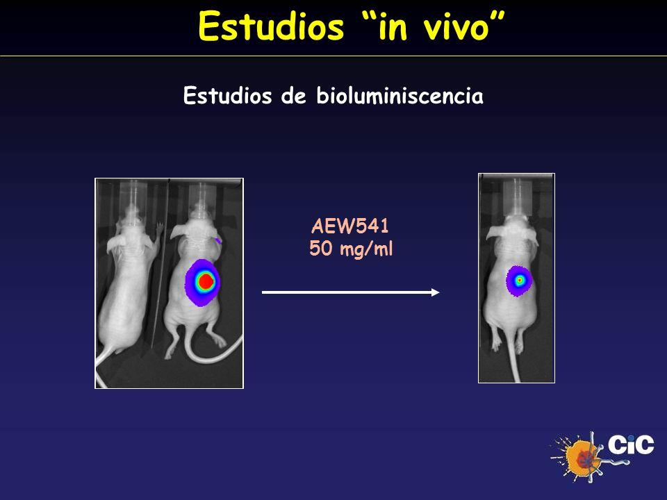 Estudios de bioluminiscencia