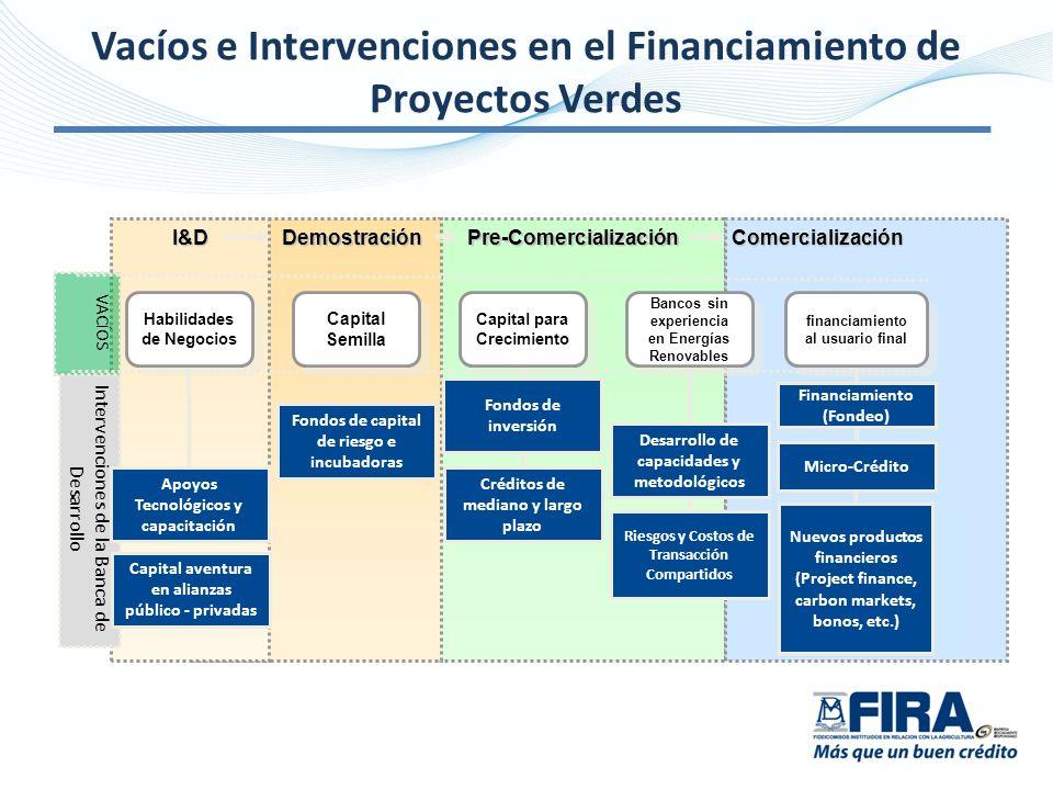 Vacíos e Intervenciones en el Financiamiento de Proyectos Verdes