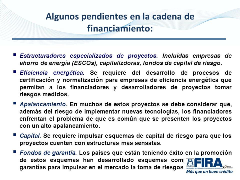Algunos pendientes en la cadena de financiamiento: