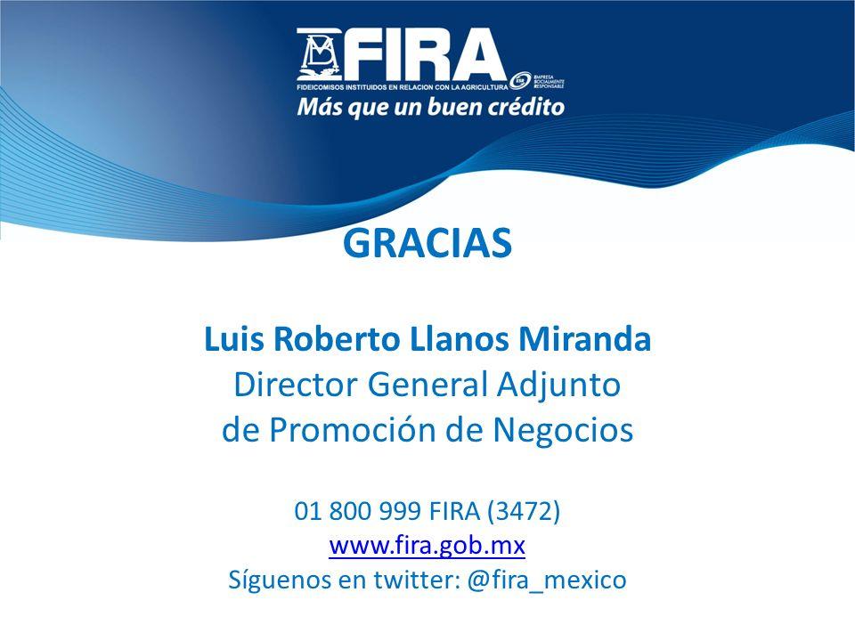 Luis Roberto Llanos Miranda