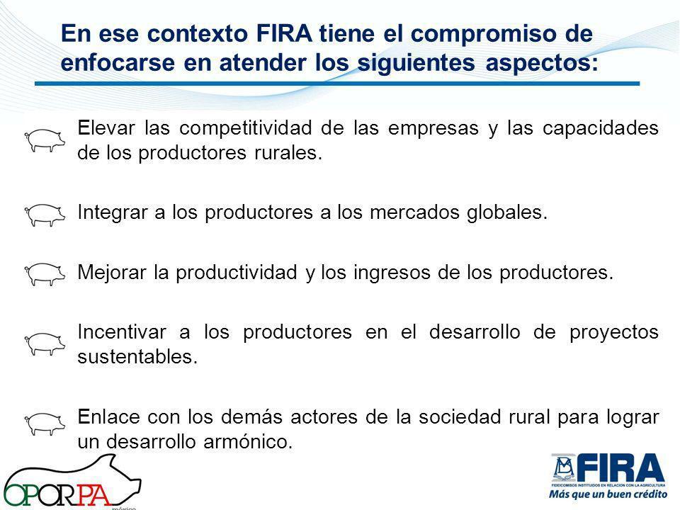 En ese contexto FIRA tiene el compromiso de enfocarse en atender los siguientes aspectos: