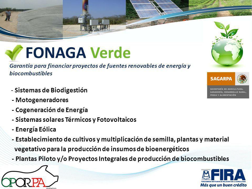 FONAGA Verde - Sistemas de Biodigestión - Motogeneradores