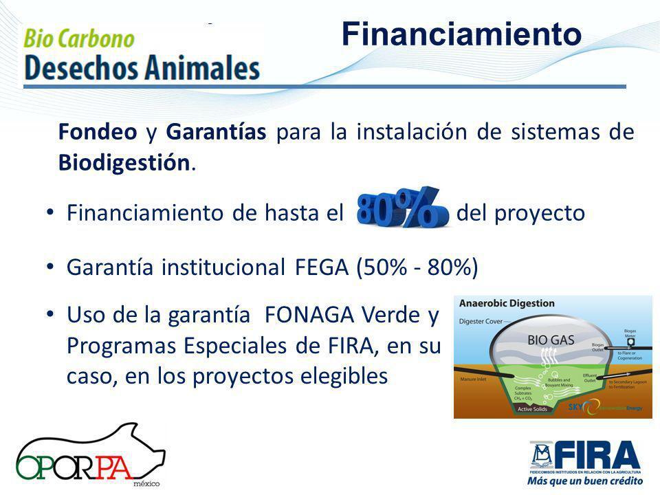 Fi Financiamiento Fondeo y Garantías para la instalación de sistemas de Biodigestión.