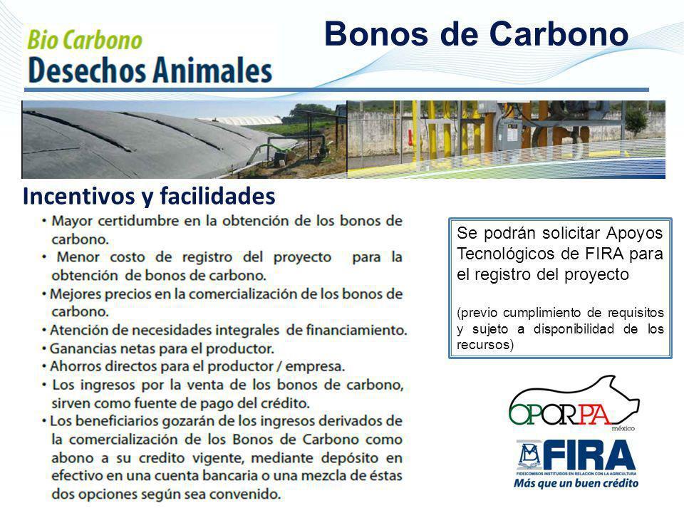 Bonos de Carbono Incentivos y facilidades