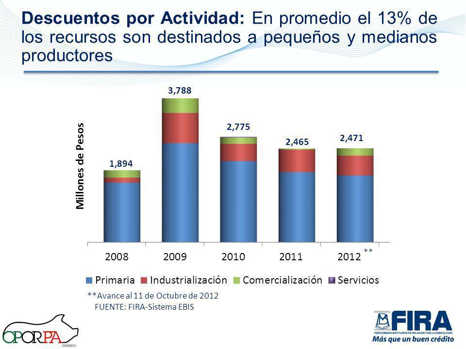 Descuentos por Actividad: En promedio el 13% de los recursos son destinados a pequeños y medianos productores