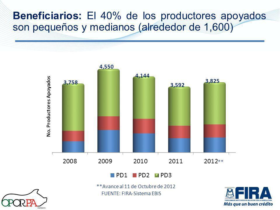Beneficiarios: El 40% de los productores apoyados son pequeños y medianos (alrededor de 1,600)