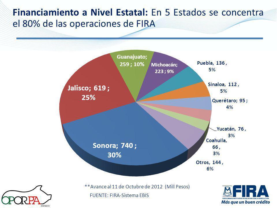 Financiamiento a Nivel Estatal: En 5 Estados se concentra el 80% de las operaciones de FIRA