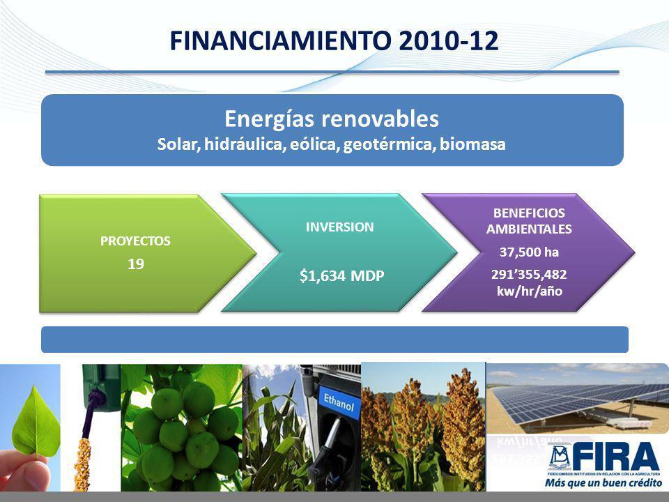 Solar, hidráulica, eólica, geotérmica, biomasa