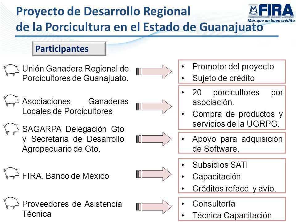 Proyecto de Desarrollo Regional