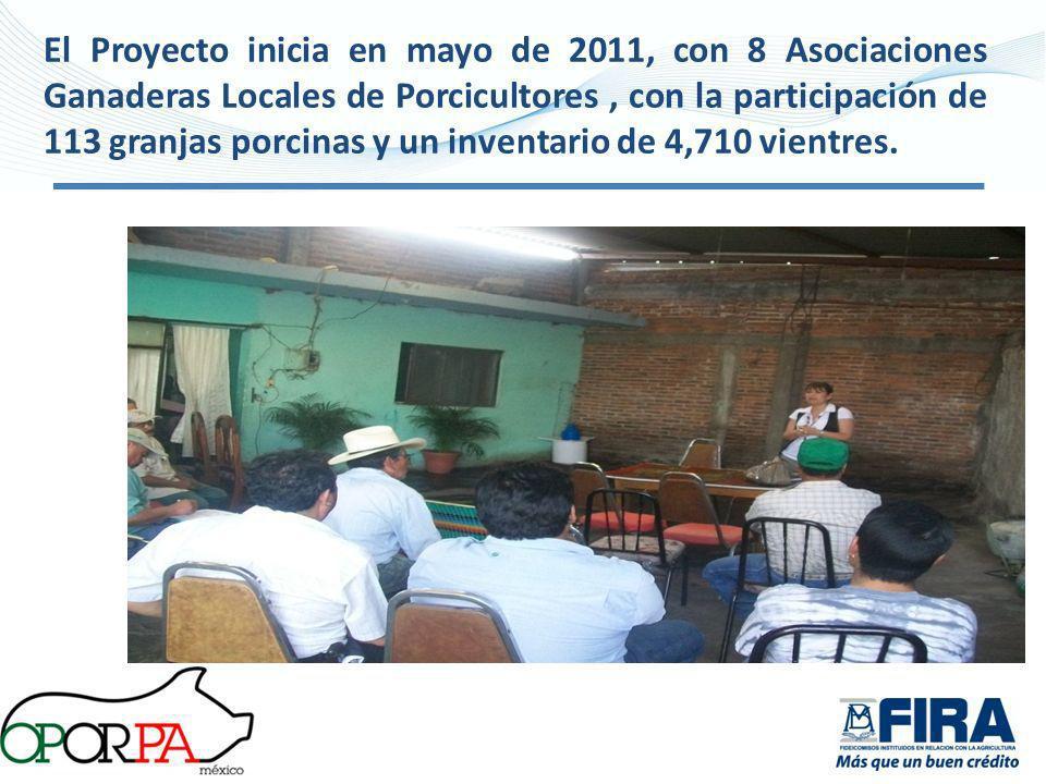 El Proyecto inicia en mayo de 2011, con 8 Asociaciones Ganaderas Locales de Porcicultores , con la participación de 113 granjas porcinas y un inventario de 4,710 vientres.
