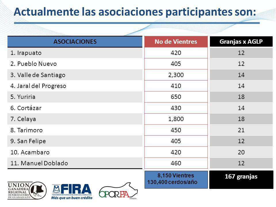 Actualmente las asociaciones participantes son: