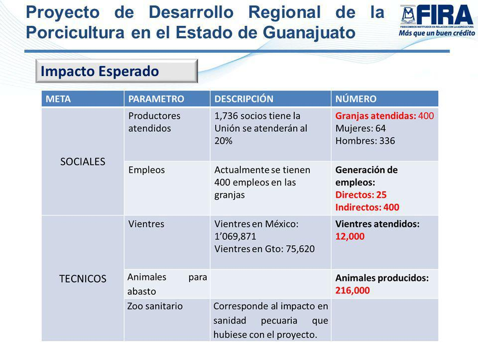 Proyecto de Desarrollo Regional de la Porcicultura en el Estado de Guanajuato