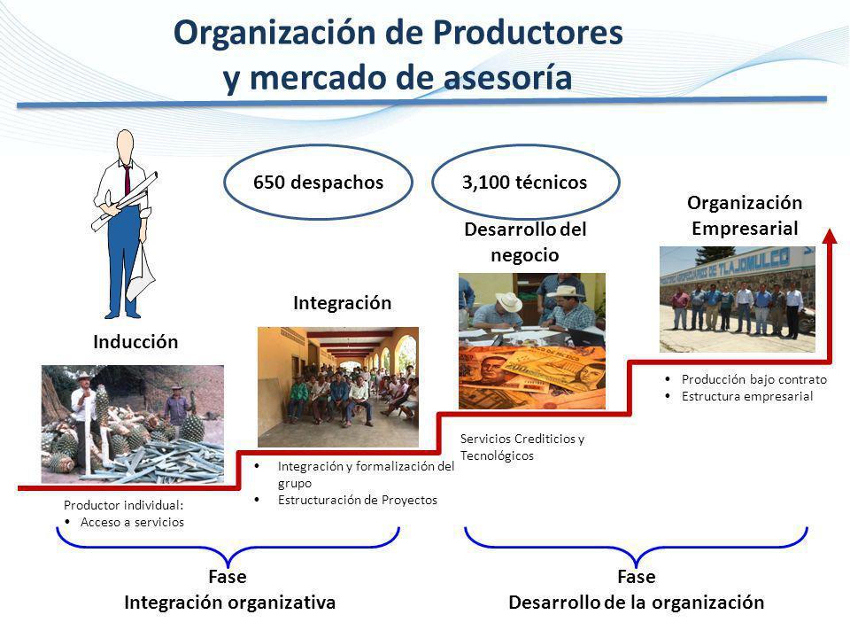 Organización de Productores y mercado de asesoría