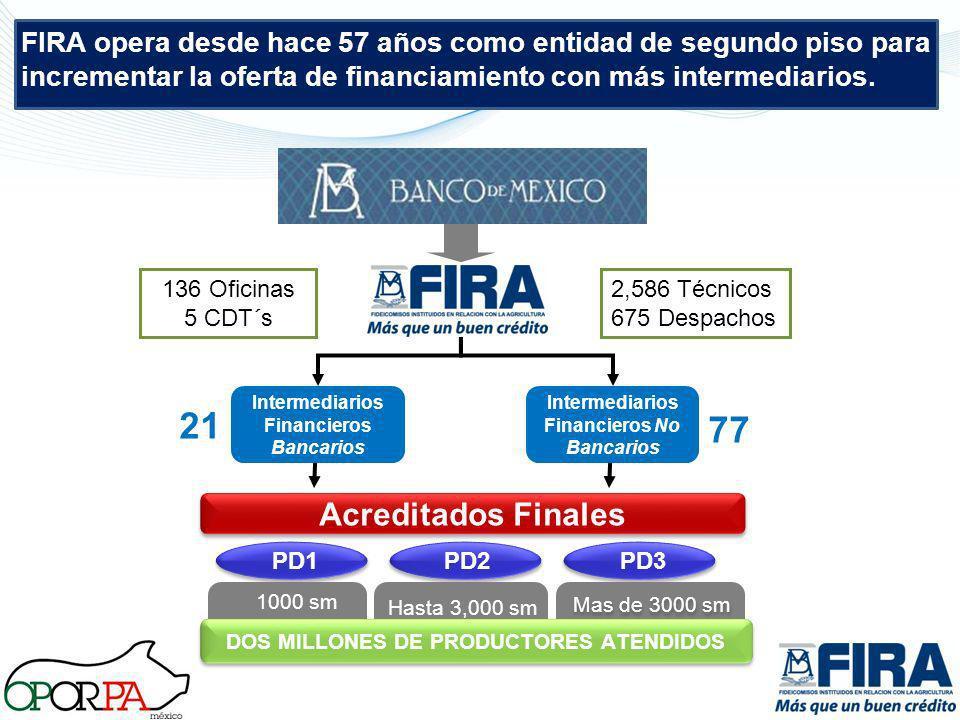 FIRA opera desde hace 57 años como entidad de segundo piso para incrementar la oferta de financiamiento con más intermediarios.