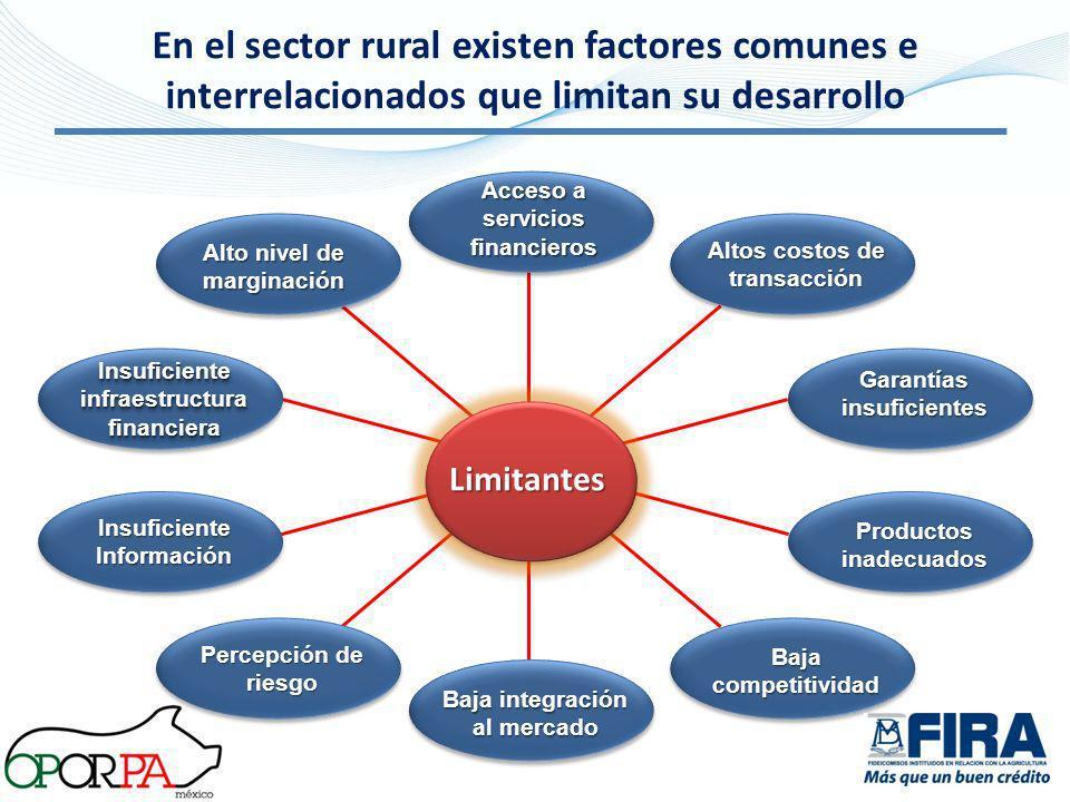 En el sector rural existen factores comunes e interrelacionados que limitan su desarrollo