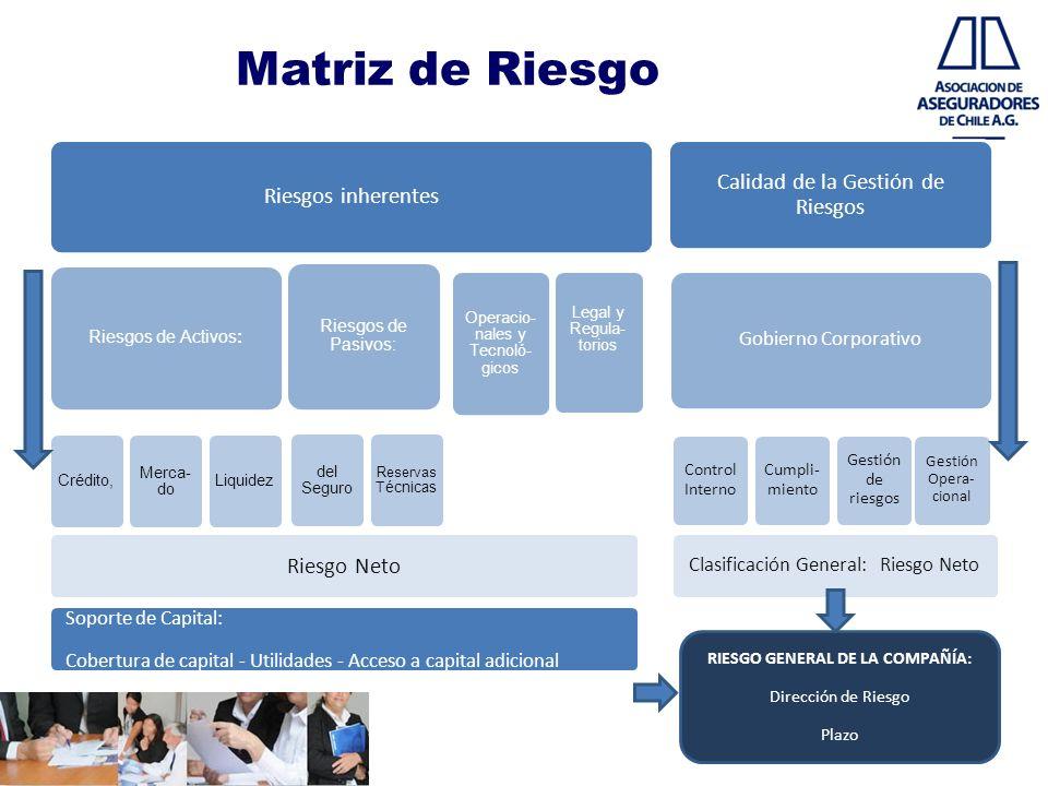 RIESGO GENERAL DE LA COMPAÑÍA: