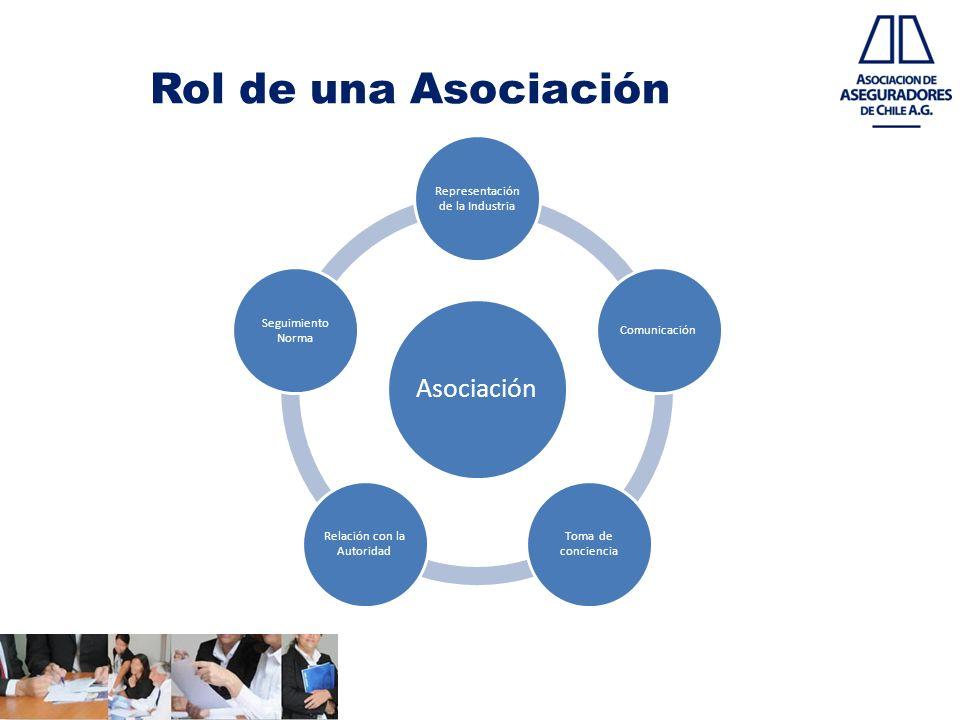 Rol de una Asociación Asociación Representación de la Industria