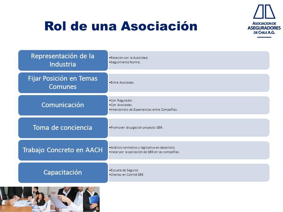 Rol de una Asociación Representación de la Industria