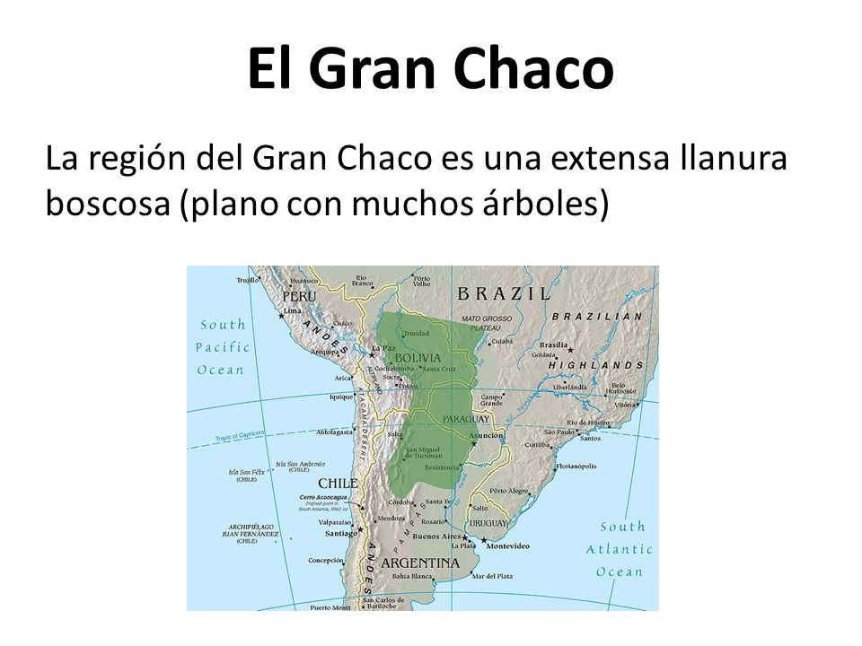 El Gran Chaco La región del Gran Chaco es una extensa llanura boscosa (plano con muchos árboles)