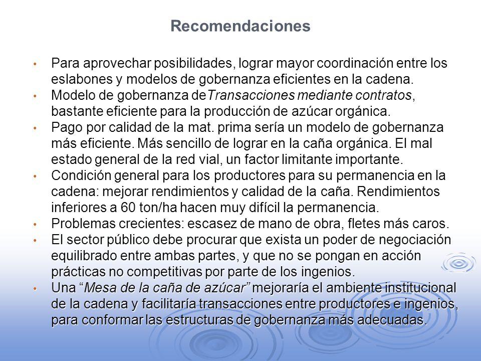 RecomendacionesPara aprovechar posibilidades, lograr mayor coordinación entre los eslabones y modelos de gobernanza eficientes en la cadena.