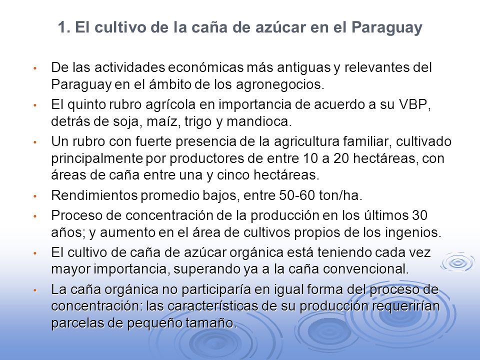 1. El cultivo de la caña de azúcar en el Paraguay