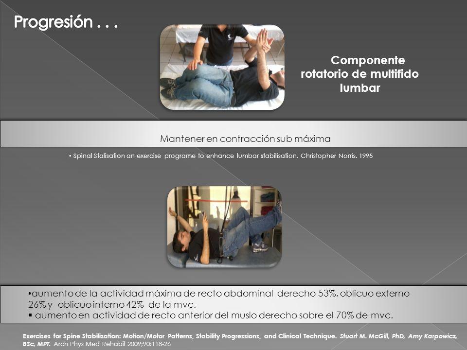 Componente rotatorio de multifido lumbar
