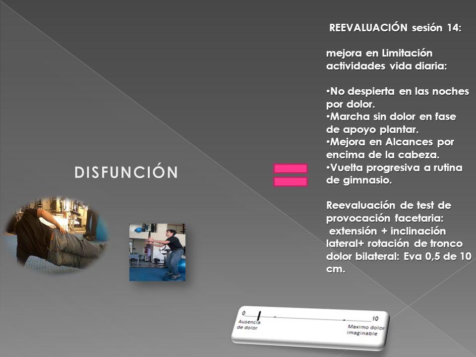 DISFUNCIÓN REEVALUACIÓN sesión 14:
