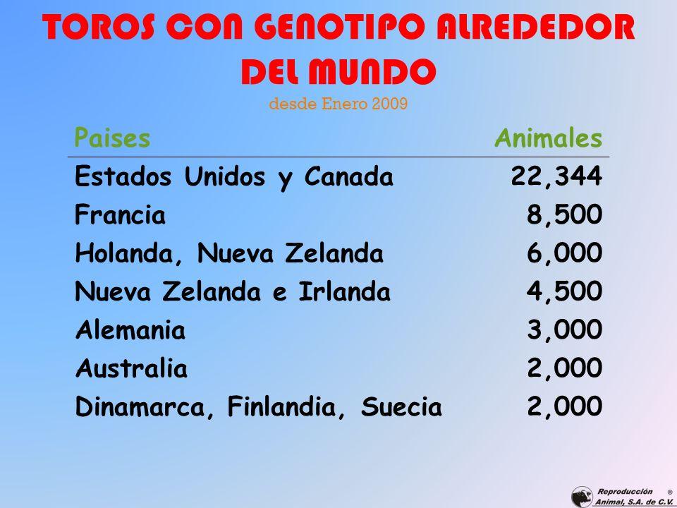 TOROS CON GENOTIPO ALREDEDOR DEL MUNDO desde Enero 2009