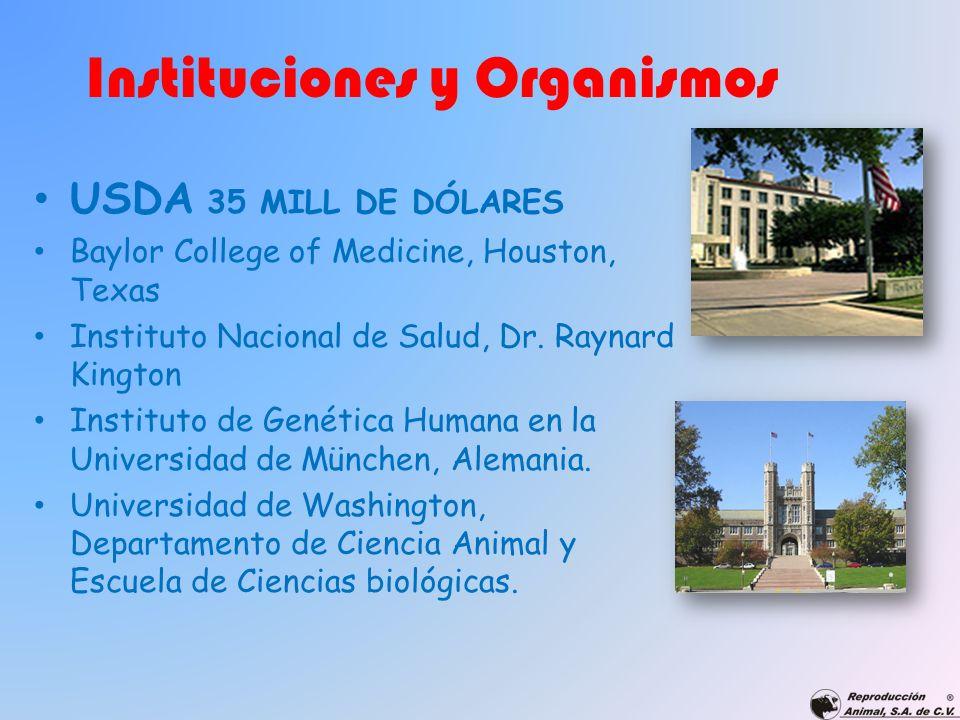 Instituciones y Organismos