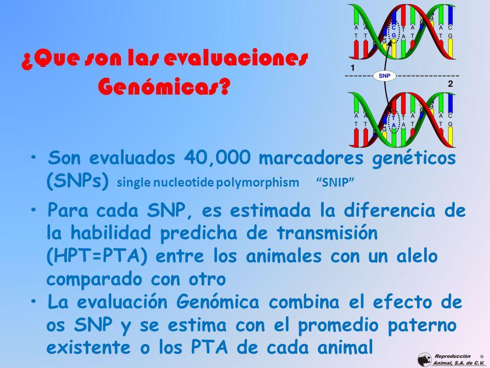 ¿Que son las evaluaciones Genómicas