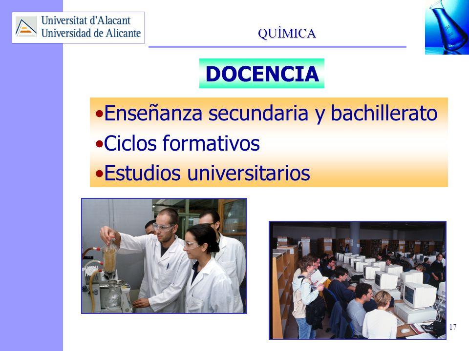 DOCENCIA Enseñanza secundaria y bachillerato Ciclos formativos Estudios universitarios