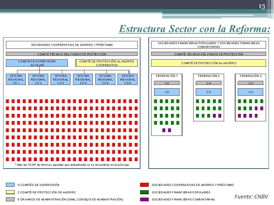 Estructura Sector con la Reforma: