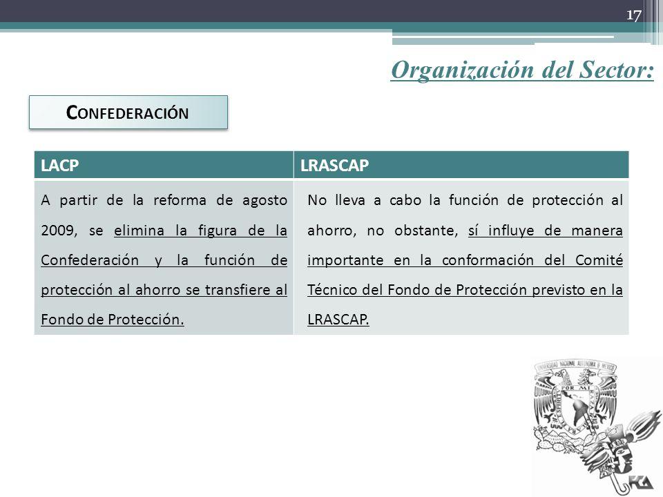 Organización del Sector: