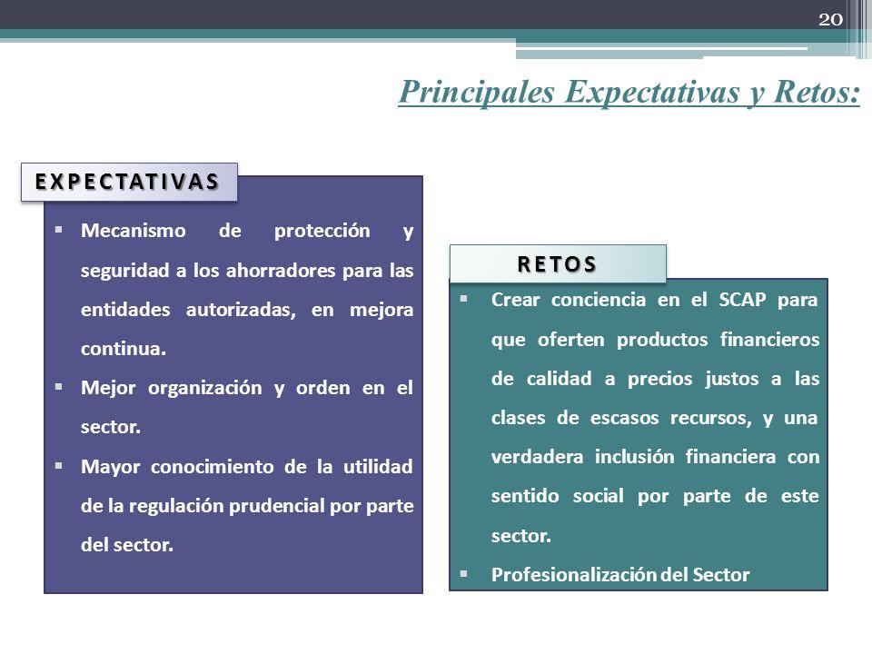 Principales Expectativas y Retos: