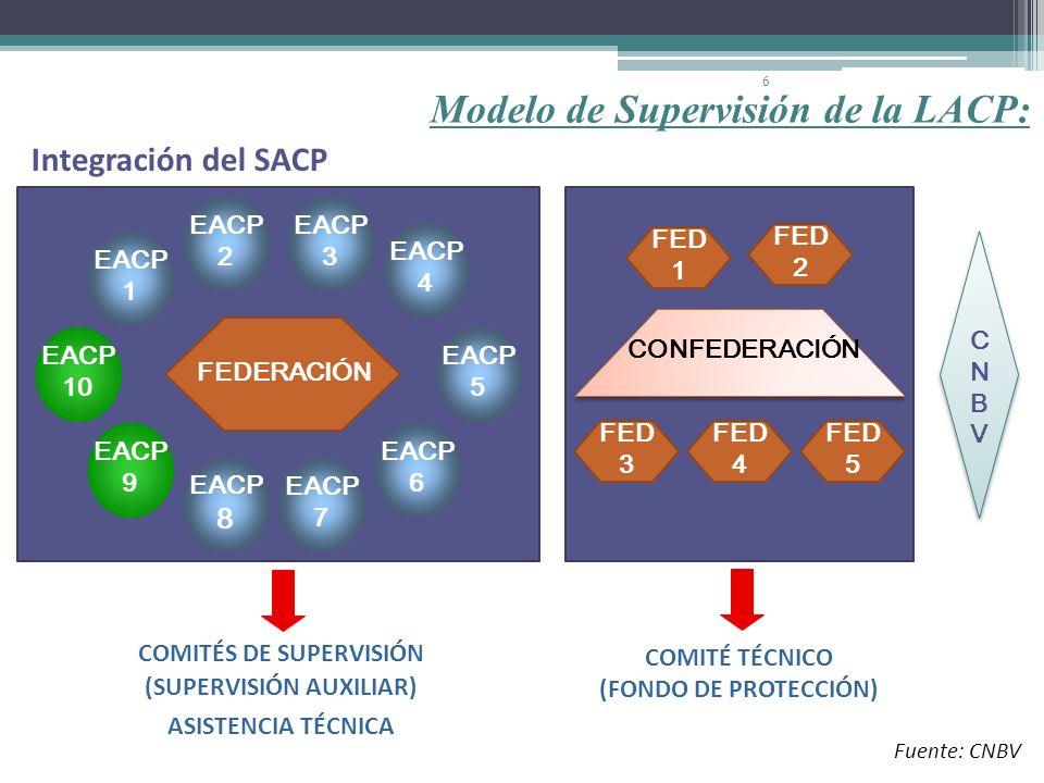 COMITÉS DE SUPERVISIÓN (SUPERVISIÓN AUXILIAR)