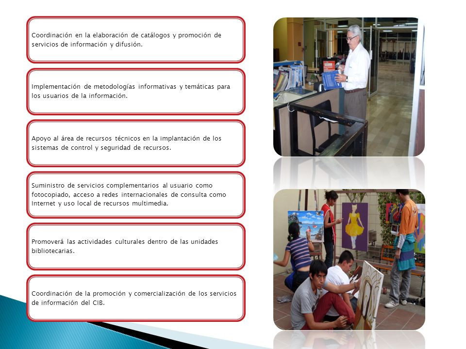 Coordinación en la elaboración de catálogos y promoción de servicios de información y difusión.