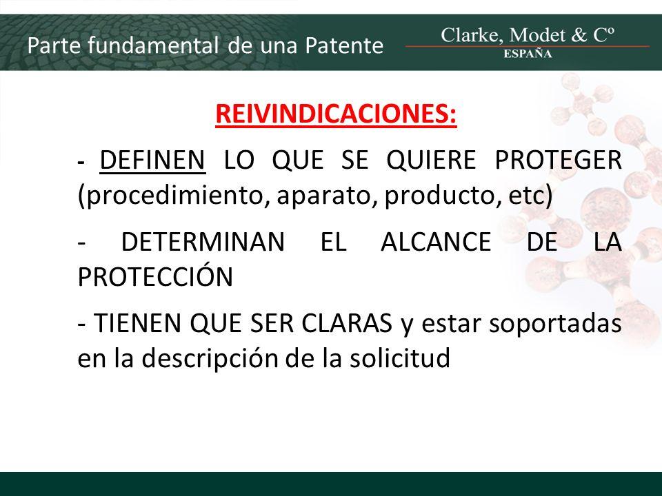 - DETERMINAN EL ALCANCE DE LA PROTECCIÓN