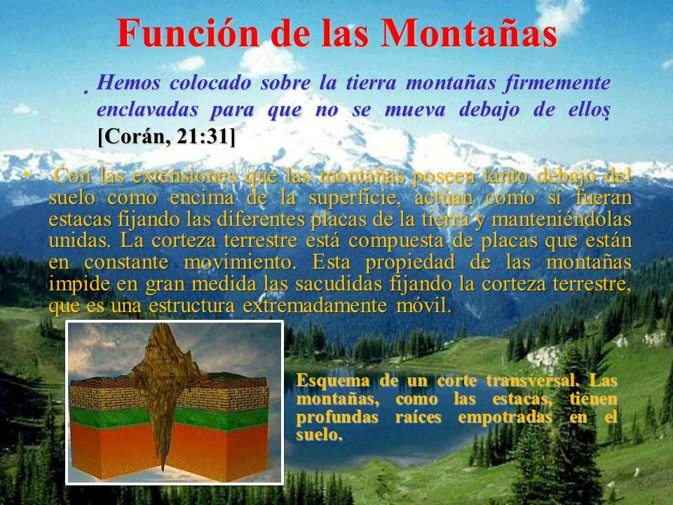 Función de las Montañas