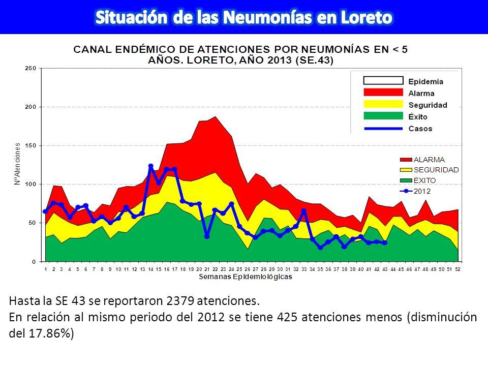 Situación de las Neumonías en Loreto