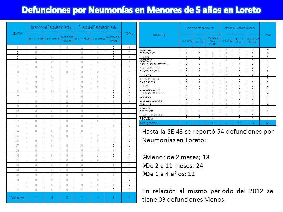 Defunciones por Neumonías en Menores de 5 años en Loreto