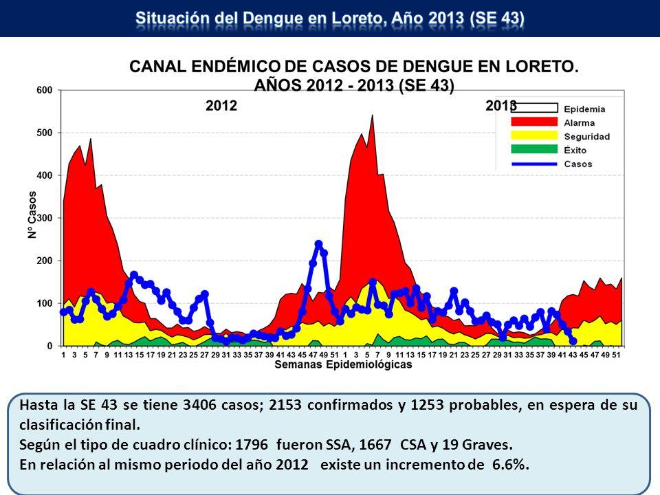 Situación del Dengue en Loreto, Año 2013 (SE 43)