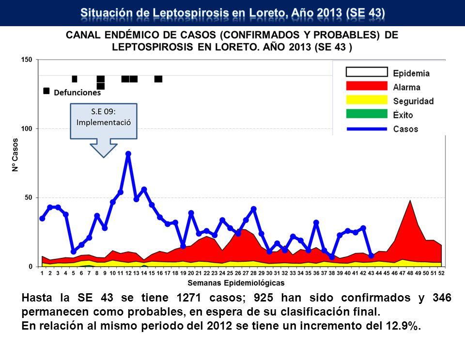 Situación de Leptospirosis en Loreto, Año 2013 (SE 43)
