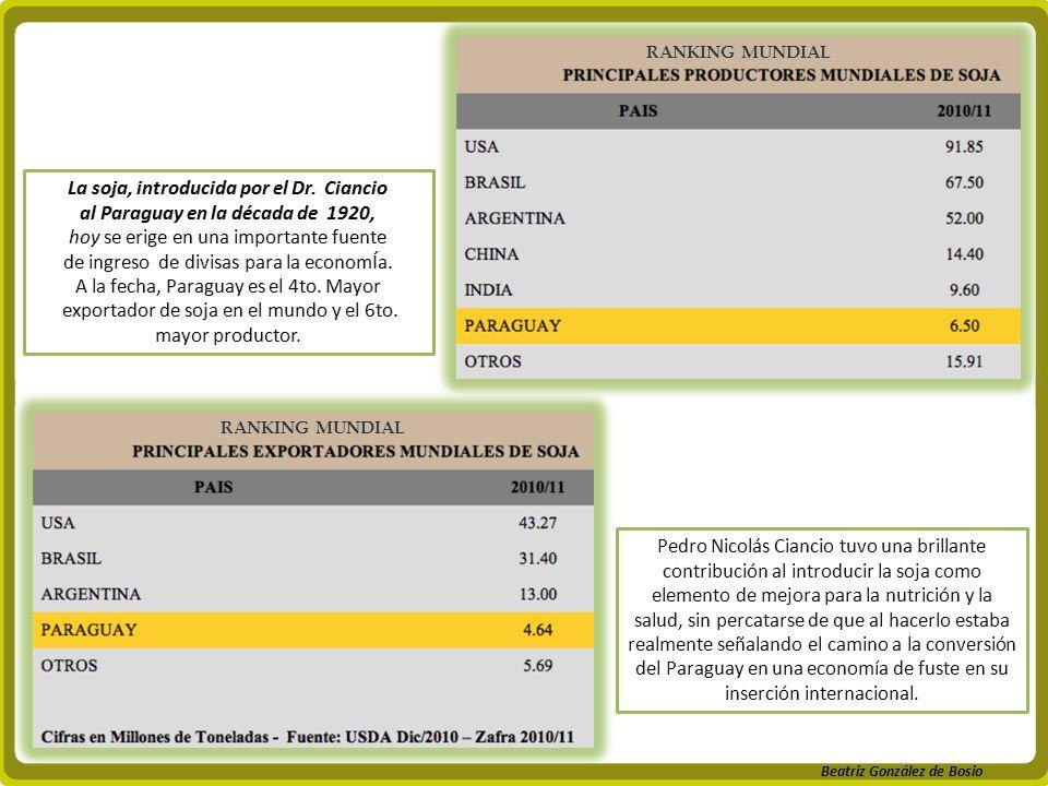 La soja, introducida por el Dr. Ciancio