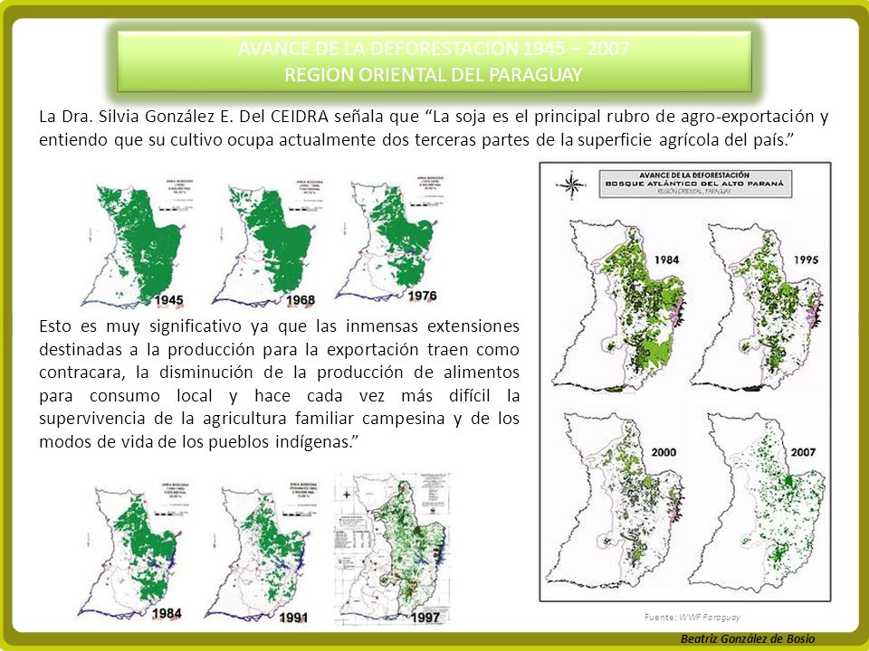 AVANCE DE LA DEFORESTACIÓN 1945 – 2007 REGION ORIENTAL DEL PARAGUAY