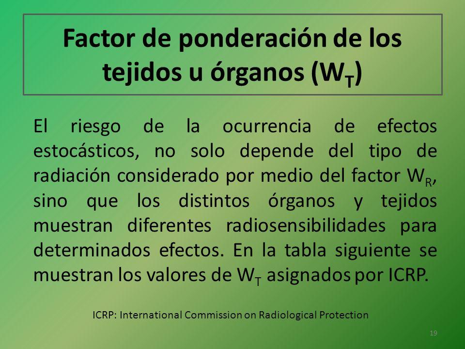 Factor de ponderación de los tejidos u órganos (WT)
